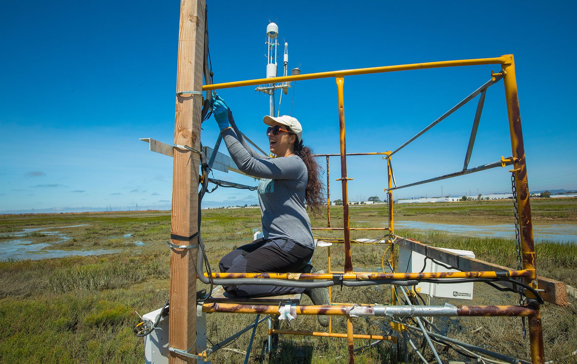Woman works on scaffolding in wetlands area