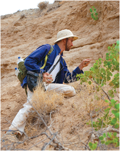 CSUEB Professor Henry Gilbert searches for skeletal specimens in the Great Rift Valley in Ethiopia.