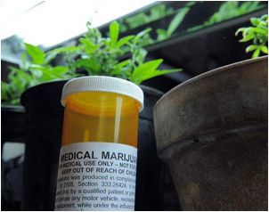 Photo of prescription pill bottle with label for medical marijuana.
