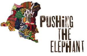 "The Diversity Center will screen ""Pushing the Elephant"" on Mar 7. (Image: artsengine.net)"