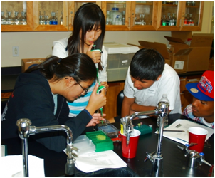Contra Costa county high school students attended biotech camp at CSUEB Concord.