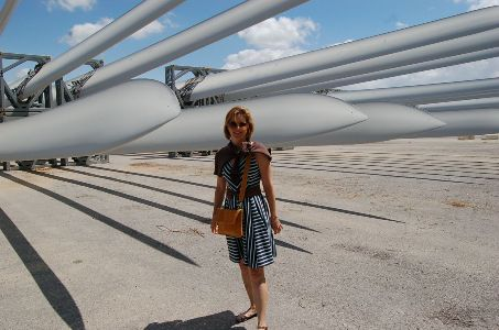 During an international travel-research project, MBA for Global Innovators student Michele LaCagnina visited a wind turbine blades production company in Izmir, Turkey.
